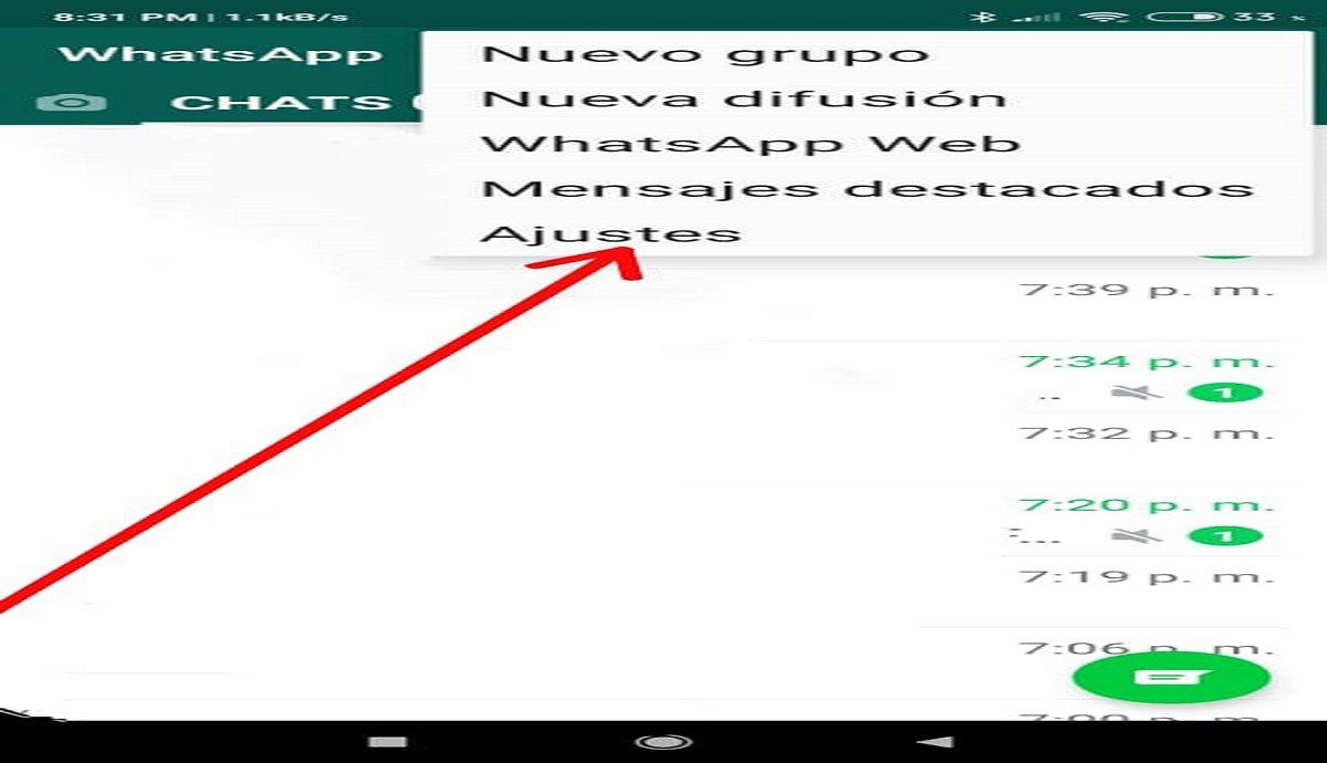 Copia de seguridad de WhatsApp2